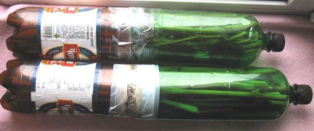 Хранение в бутылках