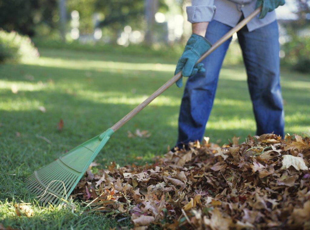 уборка листвы осенью