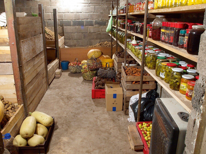 хранение овощей в погребе