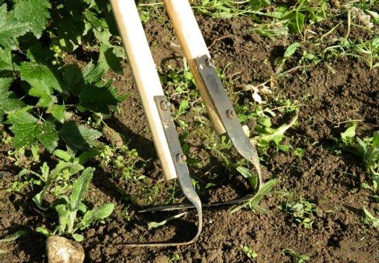 обработка почвы плоскорезом